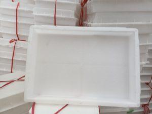 khuôn nhựa 30x45